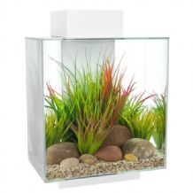 Fluval Edge Fish Tank 46 Litre Gloss White
